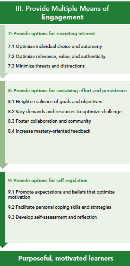 a green bulleted list of the UDL principle, guidelines, and checkpoints for engagement